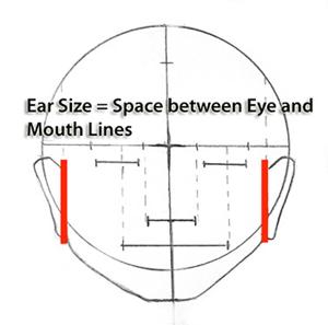 ear_spacing drawing faces